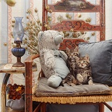 Kittens and teddy on a chair