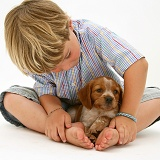 Boy with Brittany Spaniel pup