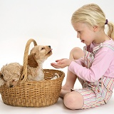 Girl with puppies in a basket