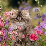 Long haired tabby Persian kitten among flowers