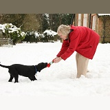 Lady playing with her puppy in the snow