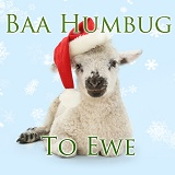 Baa humbug to ewe lamb in Santa hat