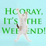 Hooray weekend kitten
