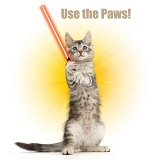 Jedi kitten - Use the Paws, Luke