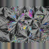 Sugar crystals viewed by polarised light